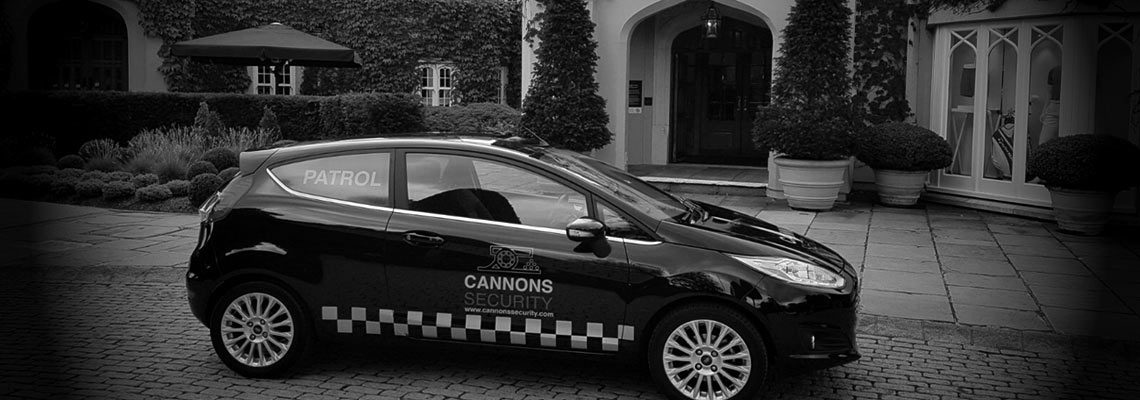 Cannons Security London
